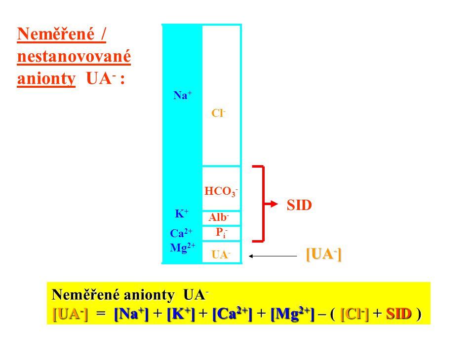 Neměřené / nestanovované anionty UA- : SID [UA-] Neměřené anionty UA-